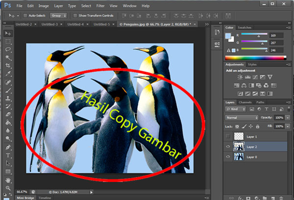 Hasil Copy Gambar Photoshop