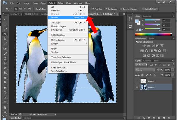 Inverse Photoshop