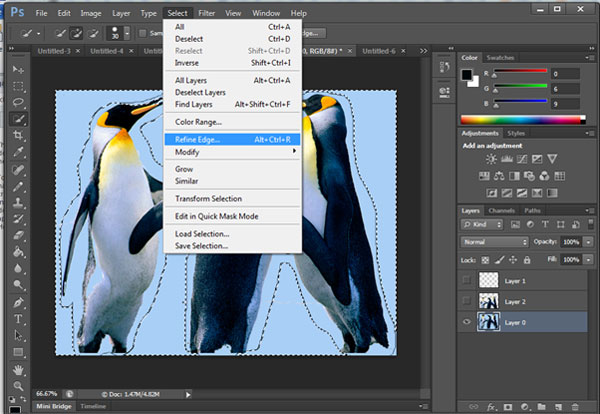 Refine Edge Photoshop