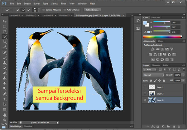 Sampai Terseleksi Semua Background Photoshop