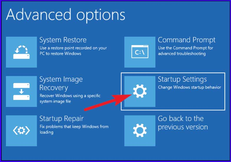 Advanced Options Startup Settings