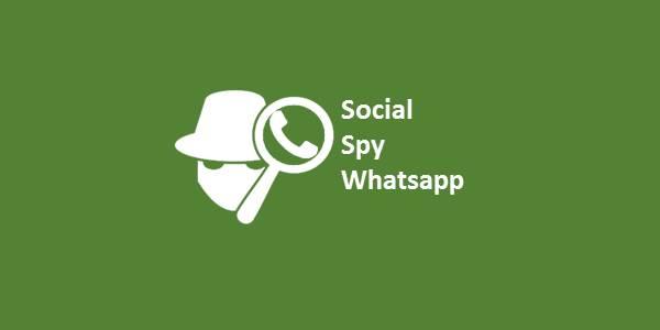 Social Spy Whatsapp