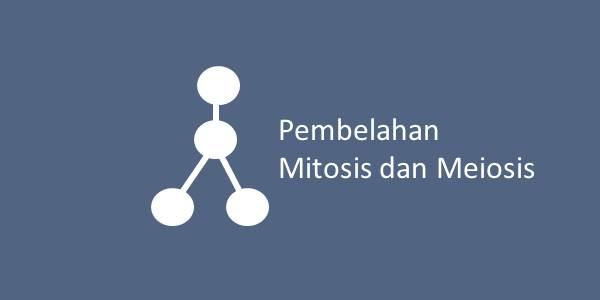 Pembelahan Mitosis dan Meiosis
